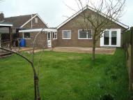 Detached Bungalow to rent in Pashford Close...