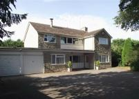 5 bedroom Detached property in Cadogan Park, Woodstock