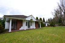 5 bedroom Detached Bungalow in South Drive, Woolsington...