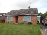 2 bed Detached Bungalow to rent in Addison Close, Feltwell...