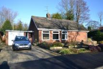 Detached Bungalow to rent in Burford Close, Wilmslow...