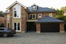 6 bedroom Detached house in Barry Rise, Bowdon...