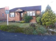 Detached Bungalow for sale in Hollingarth Way, Hemyock