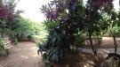 3 bedroom Detached property in Attica, Glyfada