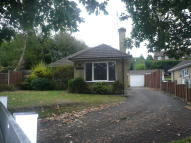 3 bed Detached Bungalow to rent in Scotland Hill, Sandhurst...