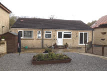 Bungalow to rent in Mortimer Road/Cubley...
