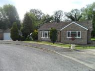 3 bed Detached Bungalow in Eastfield Close, Welton...