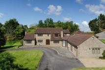 Equestrian Facility house in Martock, Somerset