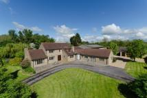 Martock Equestrian Facility house for sale