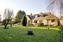 4 bedroom Character Property in Sherborne