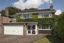 Park View Detached house for sale