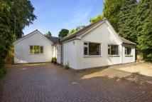 Detached Bungalow for sale in Grove Road, Knowle