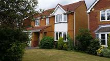 4 bed house to rent in Bader Way, Whiteley...