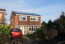 3 bedroom Detached home for sale in Guthlaxton Avenue...