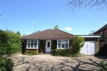 3 bed Detached Bungalow in Parkgate Road, Newdigate...