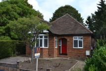 3 bed Detached Bungalow in West Bank...