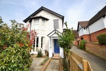 Detached property to rent in Cliftonville, Dorking
