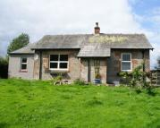 Old Detached property to rent