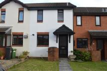 Maes Yr Hafod property to rent