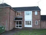 Apartment to rent in Barrett Close...