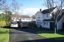 Detached home in Holtwood Drive, Ivybridge