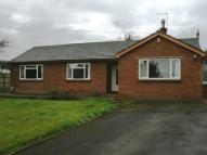 Detached Bungalow to rent in Newby West, Carlisle, CA2