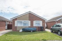Bungalow to rent in Roundstone Way...
