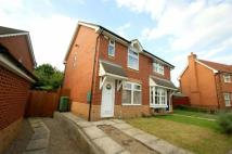 Town House in Elm Tree Close, Leeds...