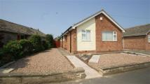 Detached Bungalow for sale in Templegate Avenue, Leeds