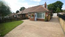 New Templegate Semi-Detached Bungalow for sale