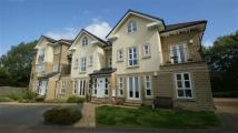 Penthouse to rent in Bluebell Court, Leeds