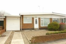 Langdale Semi-Detached Bungalow to rent