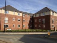 new Flat in Dukesfield, Shiremoor...