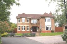 Kington Rise Detached property to rent