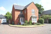 3 bedroom Detached home to rent in Willowherb Way, Shirley...