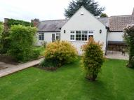 Bungalow to rent in Hall Mews, Melmerby...