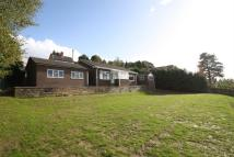 Bungalow to rent in Kelsall