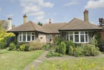 3 bed Detached Bungalow for sale in Mickleburgh Hill...