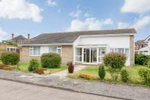 Detached Bungalow for sale in Mymms Close, Chestfield...