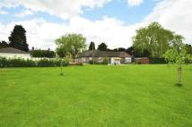 Detached Bungalow for sale in High Street, Edenbridge