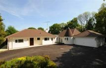 Detached Bungalow for sale in Four Elms Road...