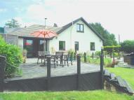 Detached Bungalow for sale in Llanboidy