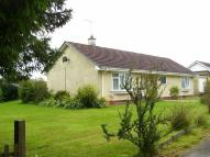 Detached Bungalow in Rhos