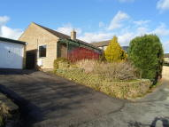 3 bedroom Detached Bungalow to rent in Shepherds Close, Uplands...