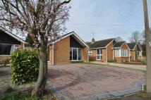 2 bed Bungalow for sale in Meadow Lane, Derrington...