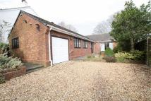3 bed Detached Bungalow for sale in South Road, Grassendale...