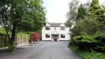 Detached property for sale in Lower Road, Halewood...