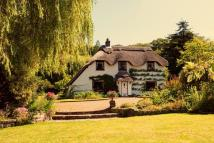 Detached home for sale in Latchmoor, Brockenhurst...