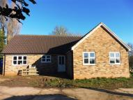 Detached Bungalow to rent in Workhouse Lane, Upwell...