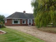 Bungalow to rent in Cliff Road, Winteringham...